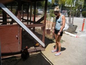 Tapia Farms 018
