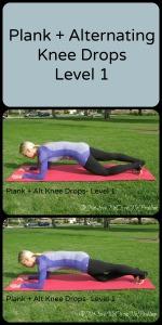 Plank Alternating Knee Drops Level 1