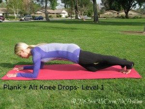 Plank Alternating Knee Drops Level 1