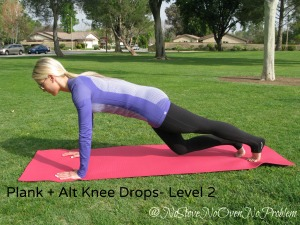 Plank w Alternating Knee Drops Level 2