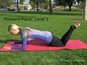Plank Level 1