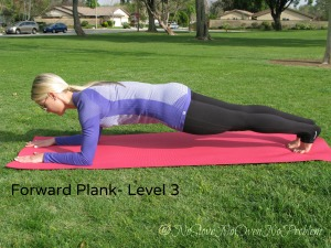 Plank Level 3