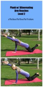 Plank w alt arm raise