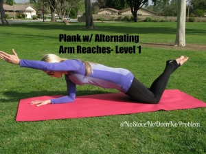 Plank w alt arm reaches L1.2