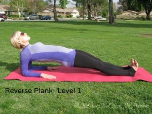 Reverse Plank Level 1