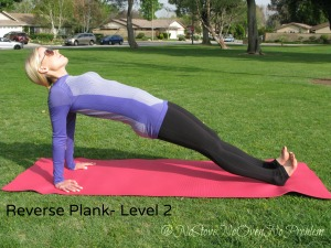 Reverse Plank Level 2