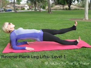 Reverse Plank Leg Lifts Level 1