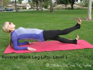 Reverse Plank Leg Lifts Level 1